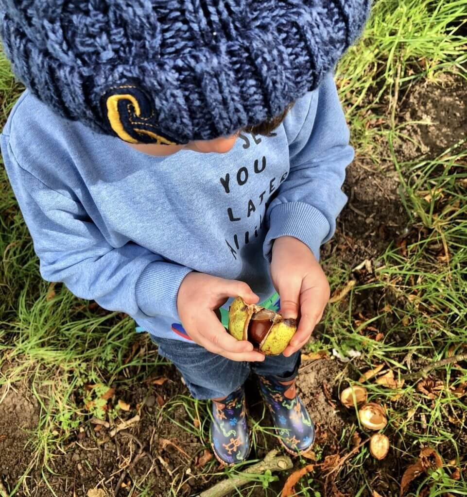 Child Opening Conker
