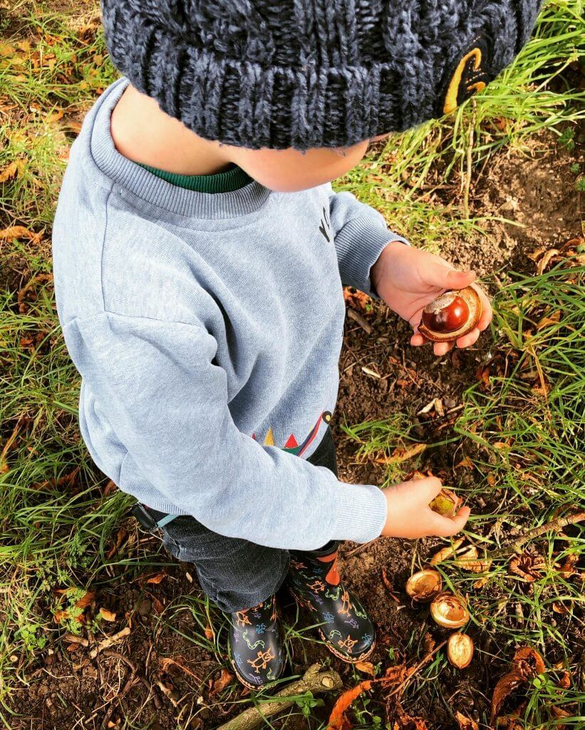 Conker Foraging
