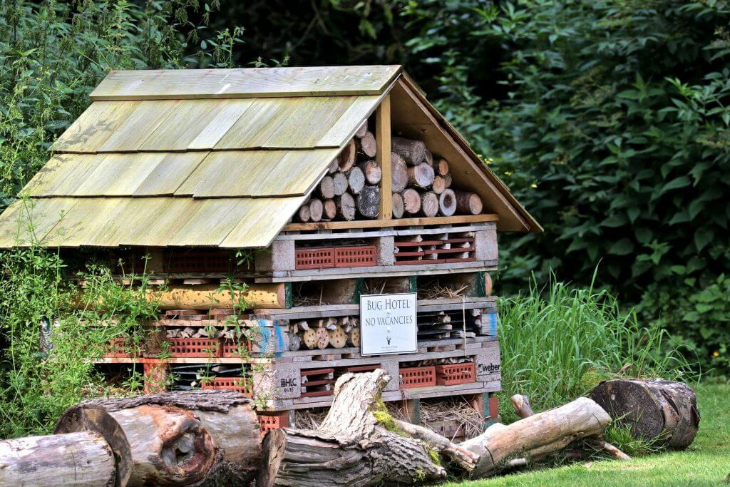 Bug Hotel Forest School Activity