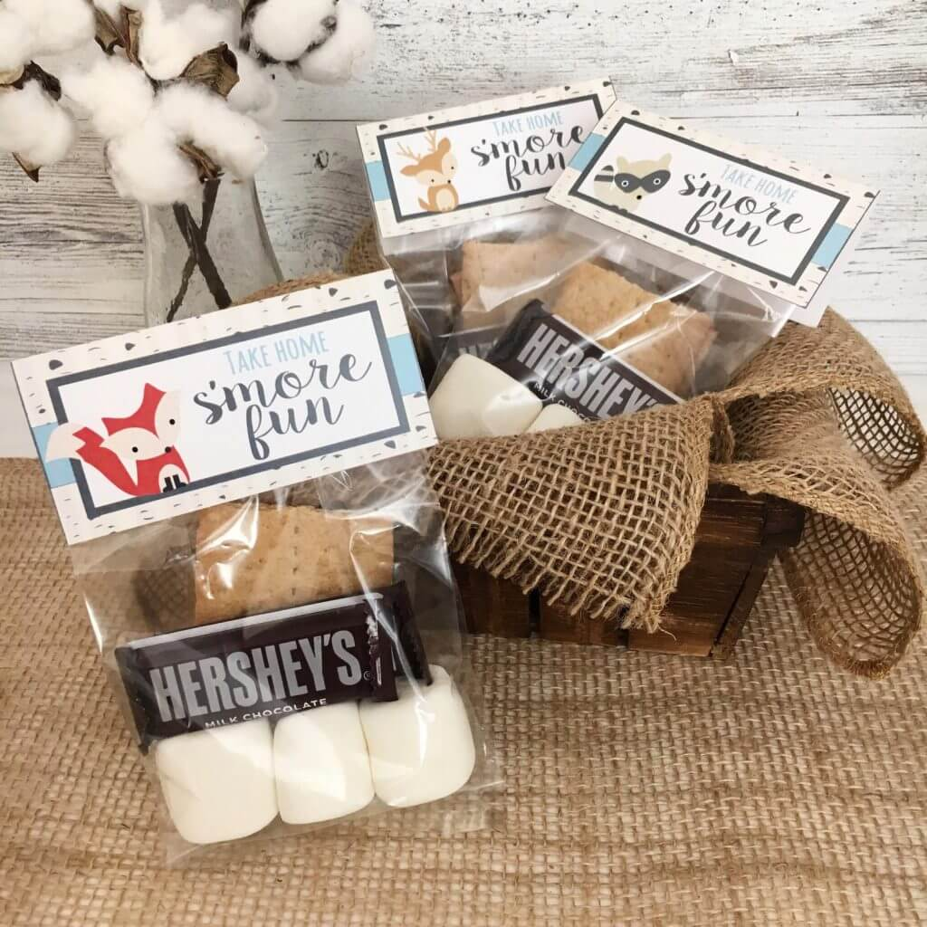 Smores Bags For Outdoor Birthday Parties