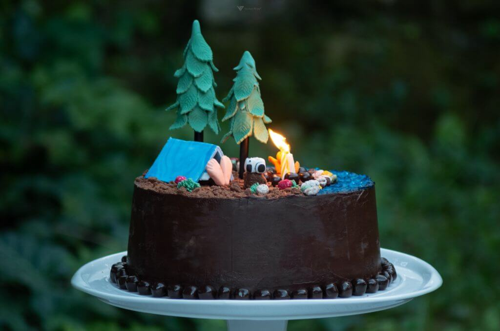 Scout Birthday Cake For An Outdoor Birthday Party