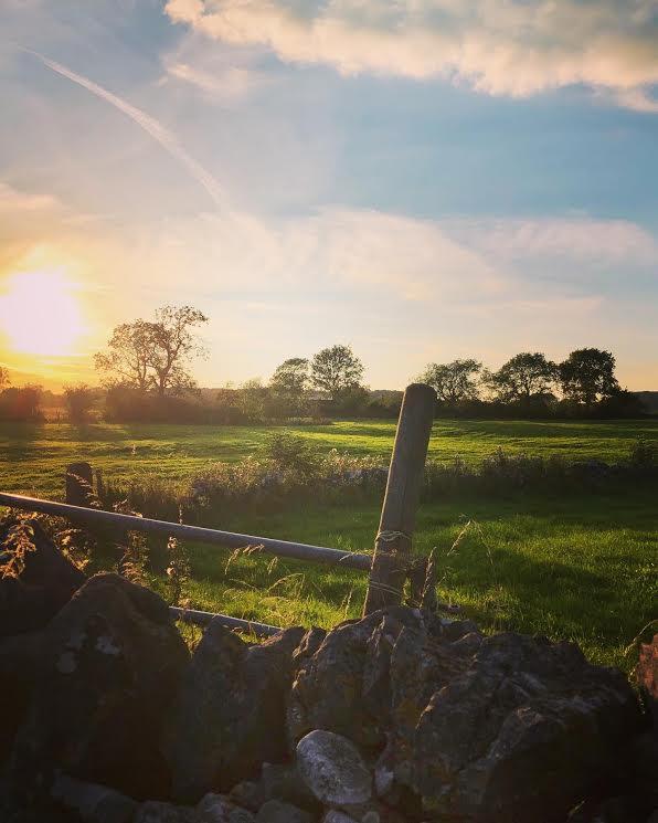 Common End Farm Sunset