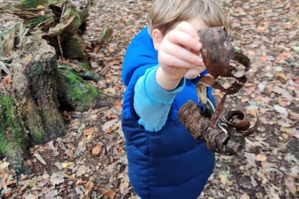 Forest School, Forest School Benefits School Scavenger Hunt