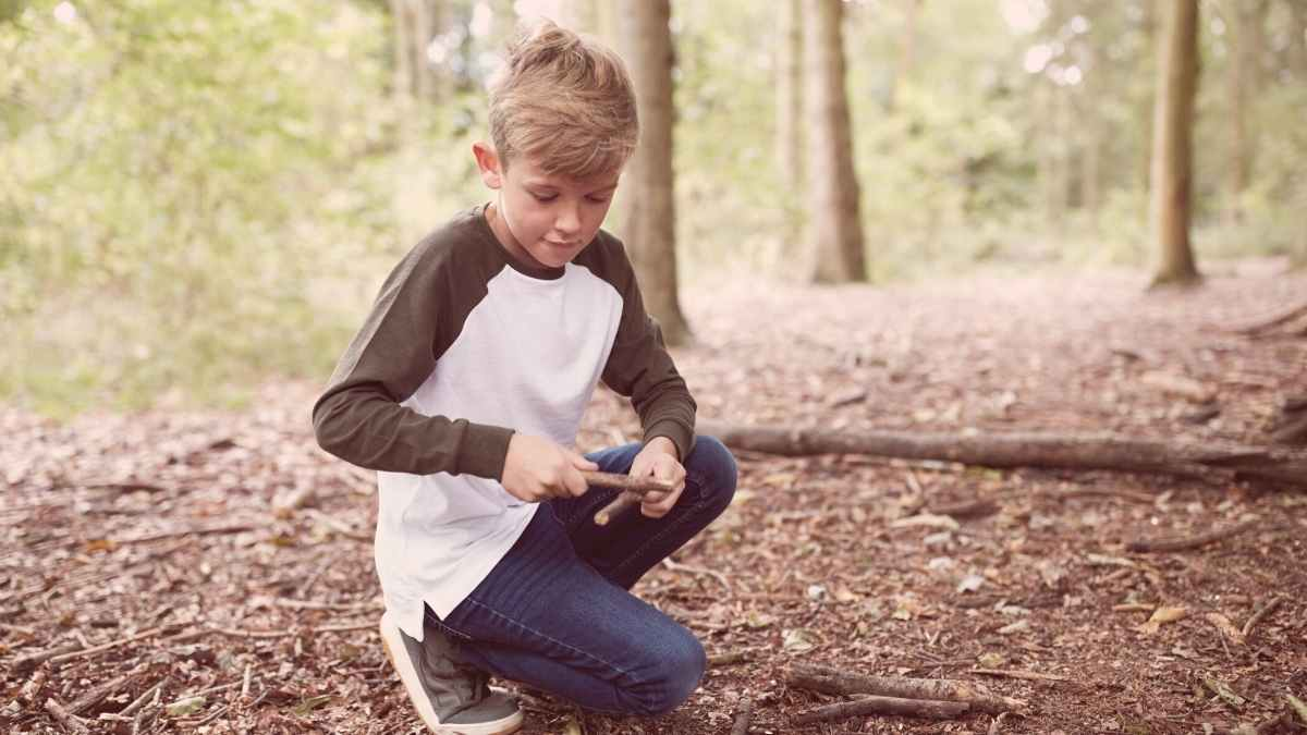 Forest School Training All You Need to Know, Levels 1, 2 & 3
