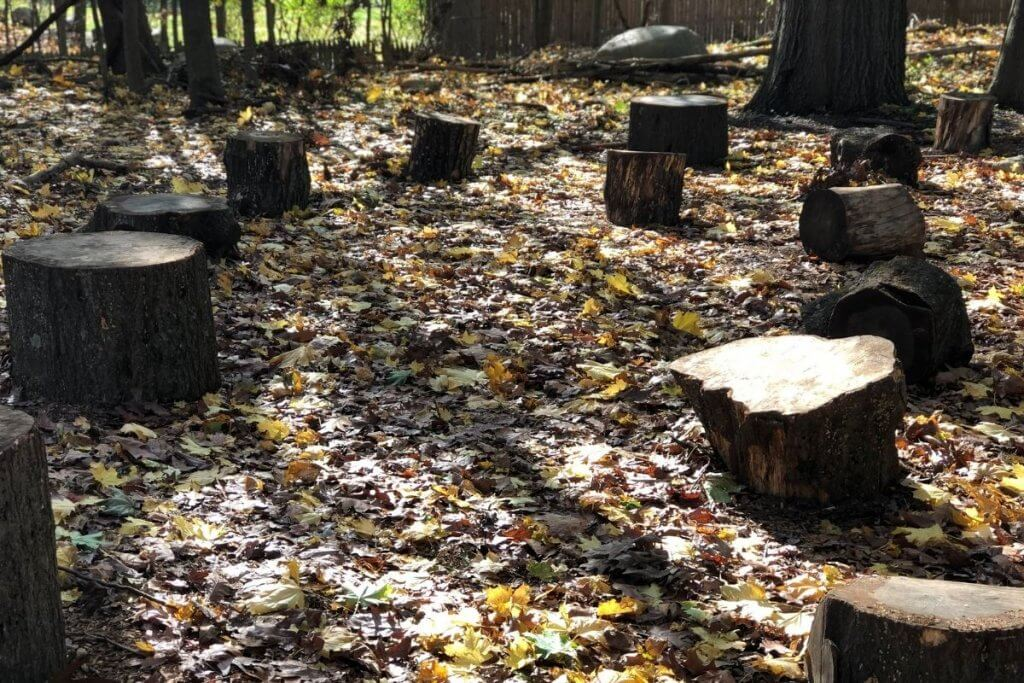 Forest School, What is Forest School Outdoor Classroom