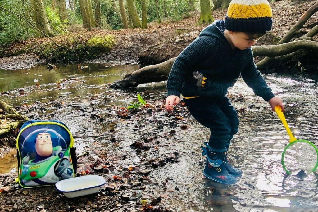 Forest School, What is Forest School Pond Dipping