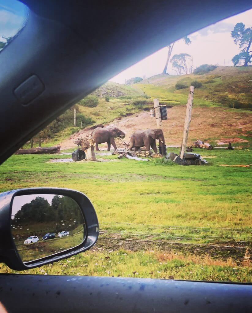 Elephant Valley