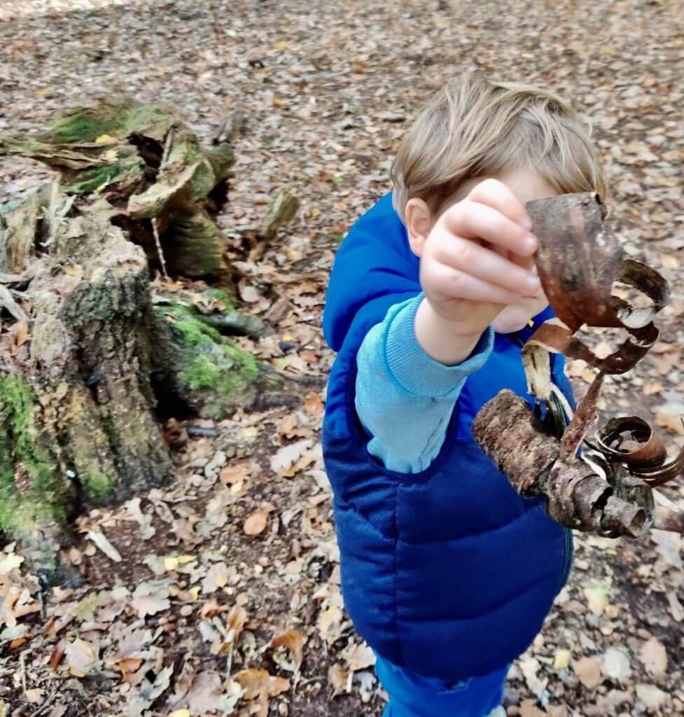 Foraging is a great bushcraft activity for kids