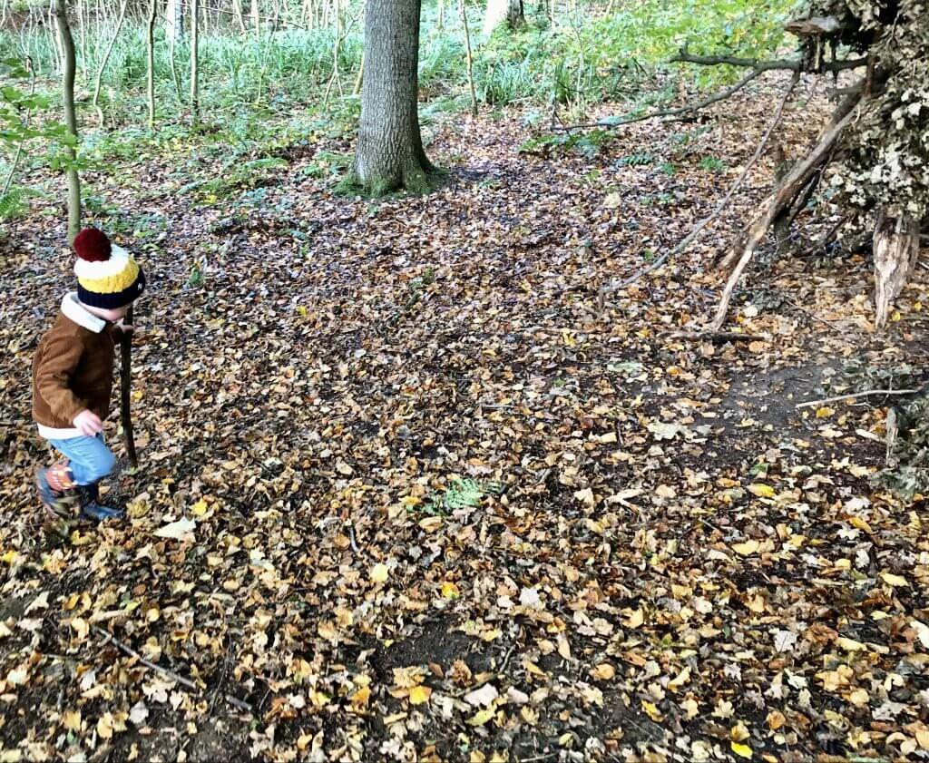 Bushcraft For Kids - Den Making