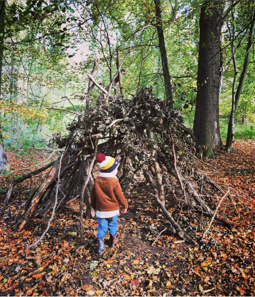 Outdoor den making in the forest
