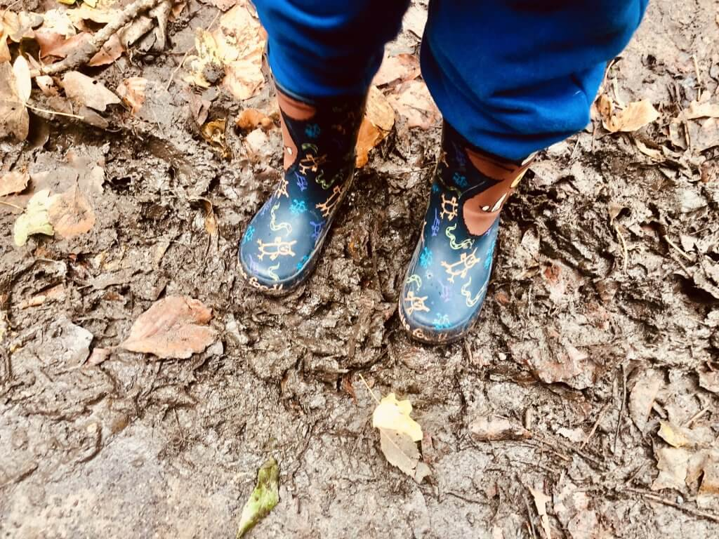 Bring wellies when trying to find the Gruffalo in the forest