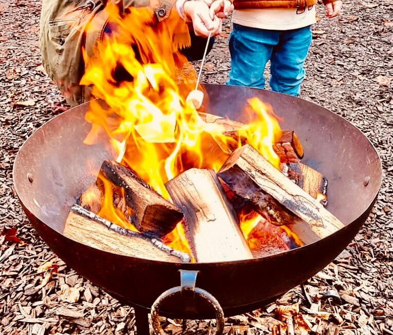 Hardwood logs for fire pits
