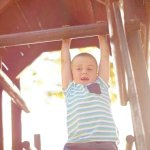 6 Jungle Gym Climbing Frames Your Kid Will Love