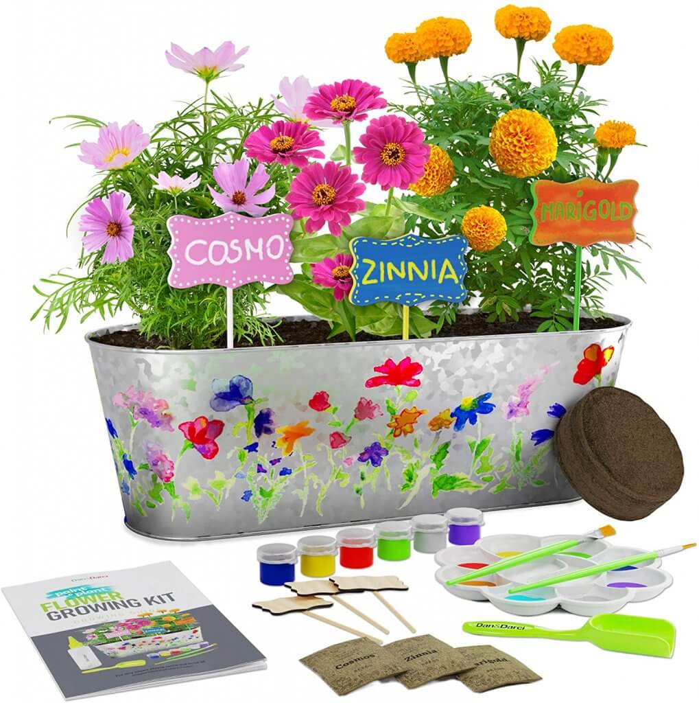 Paint and Plant Flower Growing Kit - Kids Gardening Science Gifts for Girls and Boys