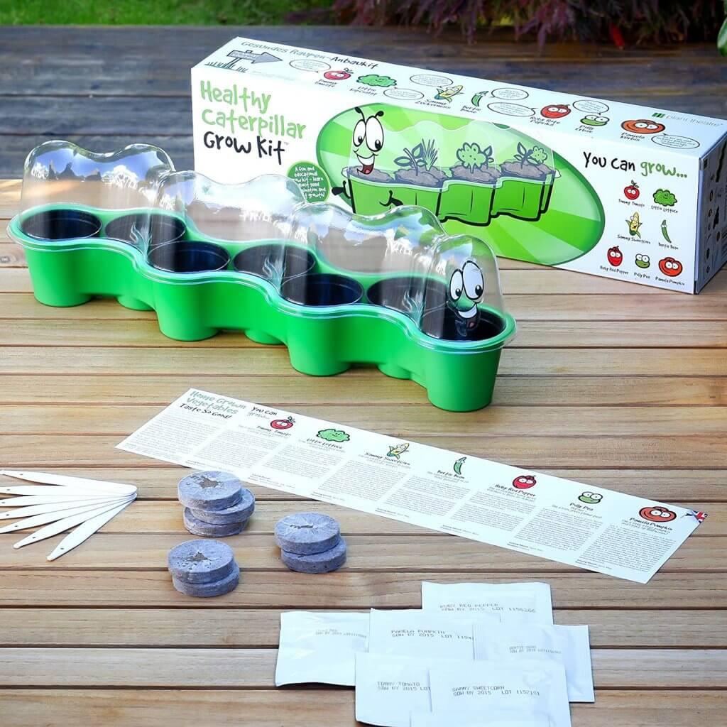 Caterpillar Kids Seed Growing Kit