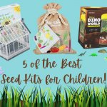 Children's Seed Growing Kits