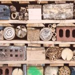 Make A Bug Hotel in Your Garden How And Why You Should Build A Bug Hotel
