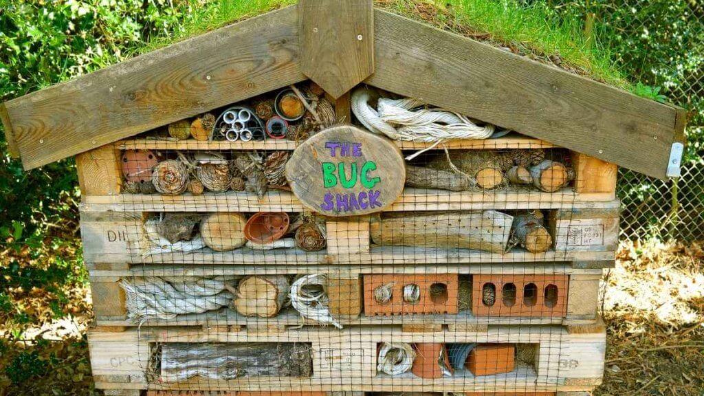 The Bug Shack Bug Hotel Close Up