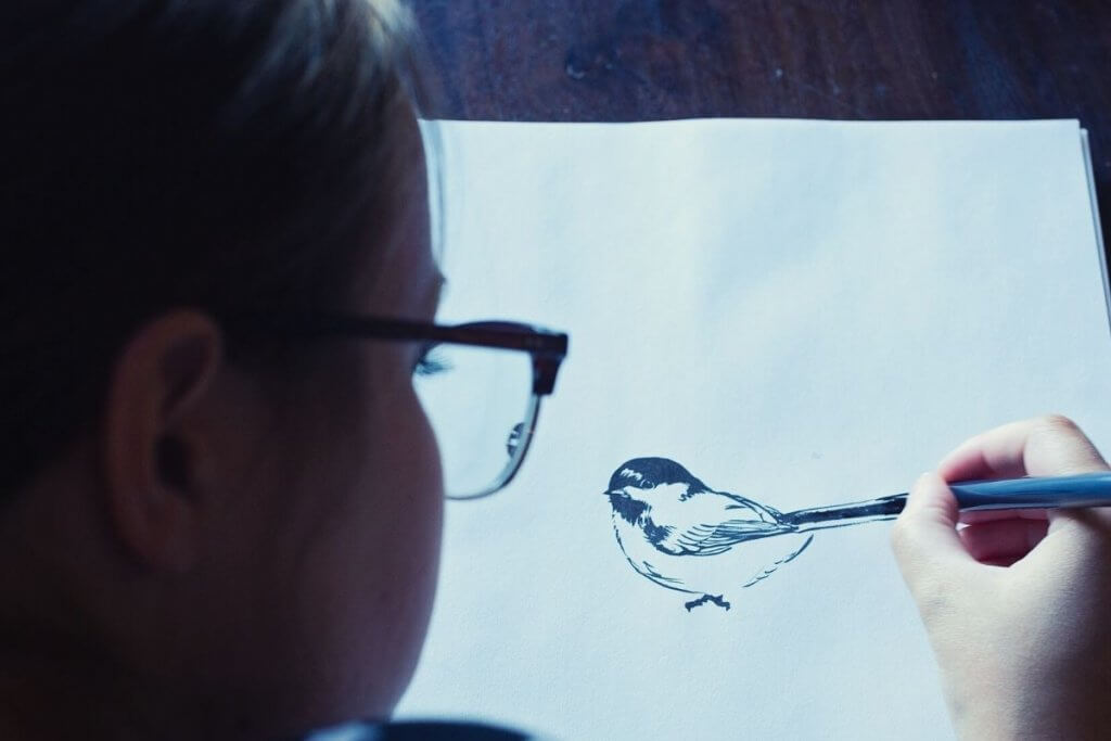 Make a Nature Journal Bird Sketch