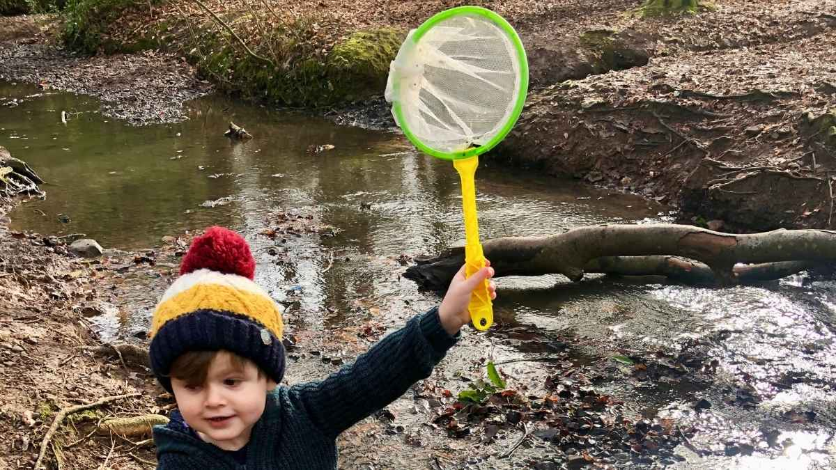 A Guide To Pond Dipping