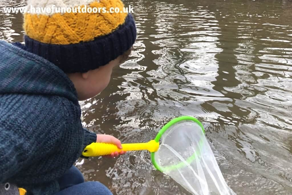 Pond Dipping Safety Tips