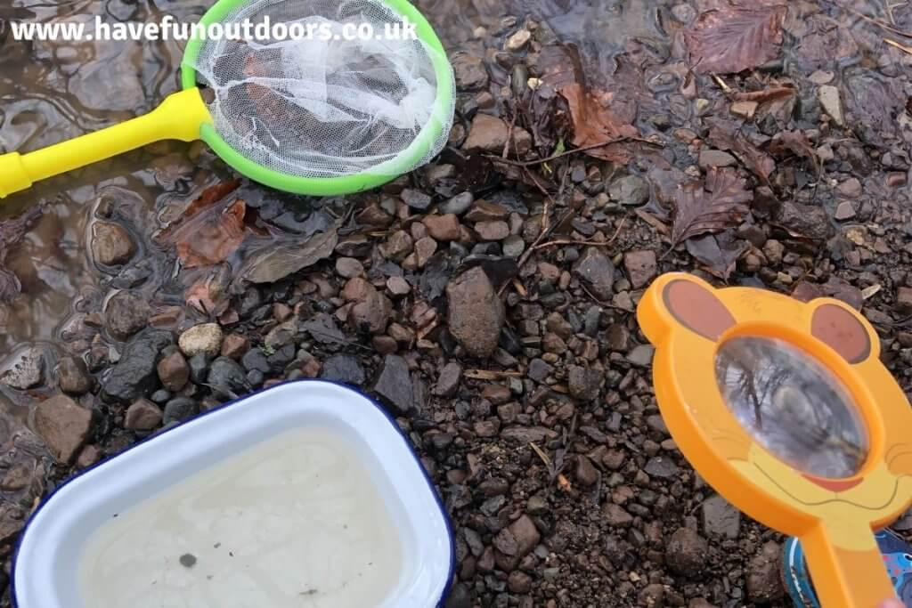 Pond Dipping Equipment