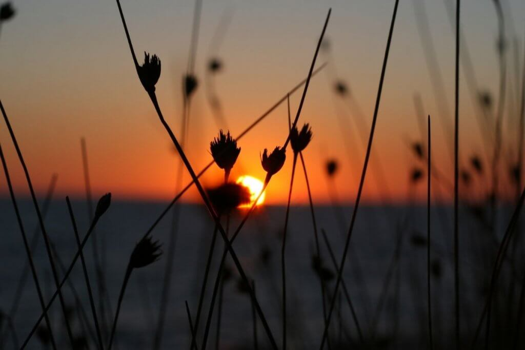 Sunsets are a natural way to help reduce stress and anxiety