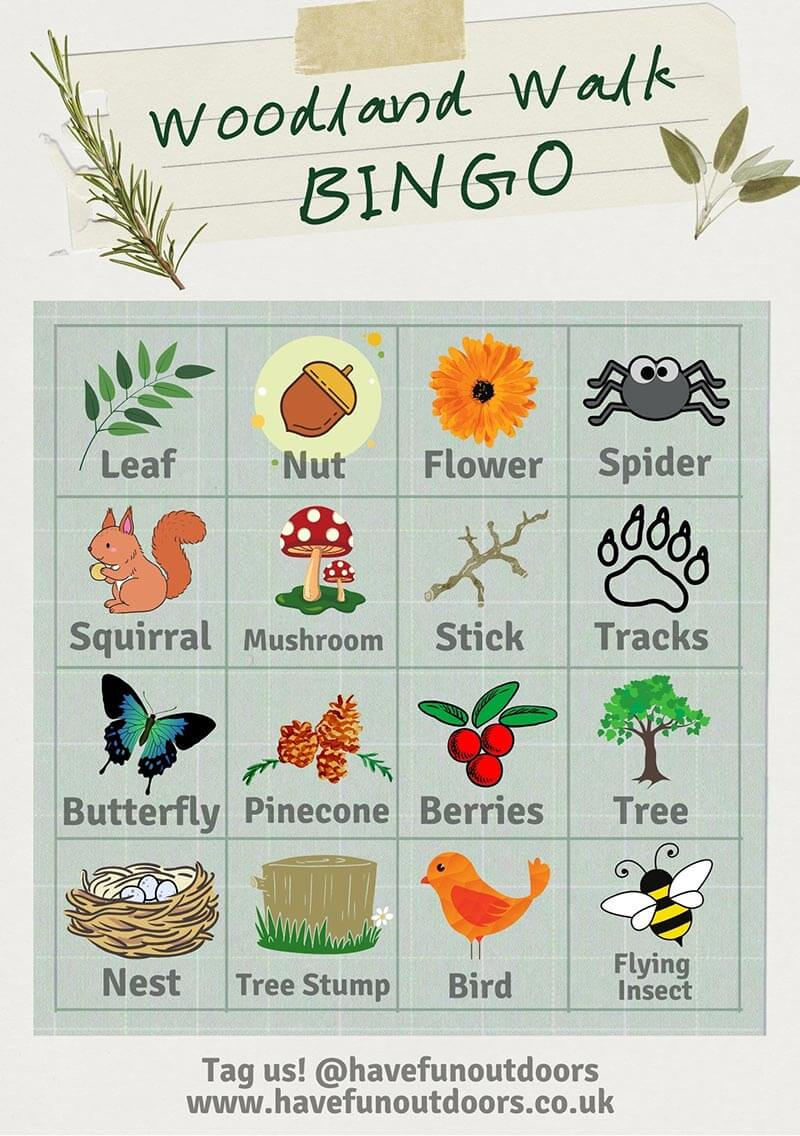 Woodland Bingo Activity