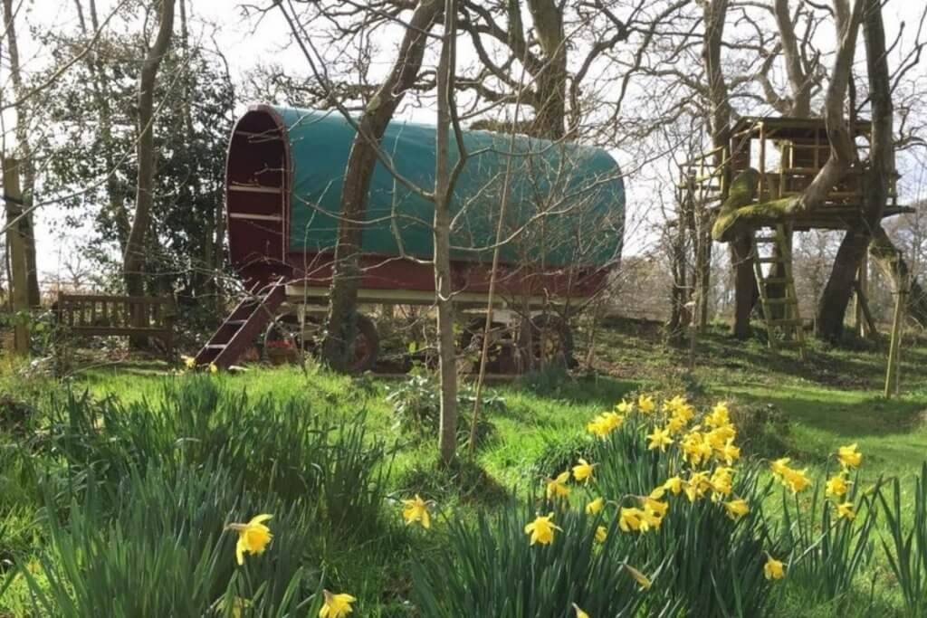 Glamping in the New Forest in a Gypsy Van