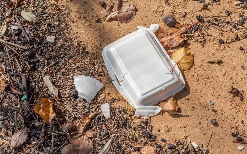 Use A Children's Litter Picker To Collect Rubbish From The Beach