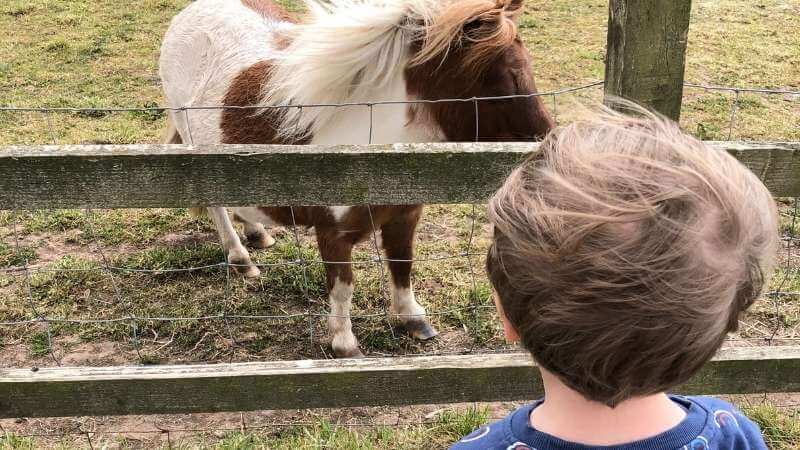 Church Farm is a great day out for kids in the Wirral